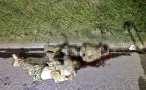 12 drug cartel members killed in Mexico