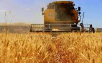 Agricultural Input Price Index rises by 6.74% annually in Turkey