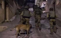 Five Palestinians kidnapped by zionist gangs in W. Bank